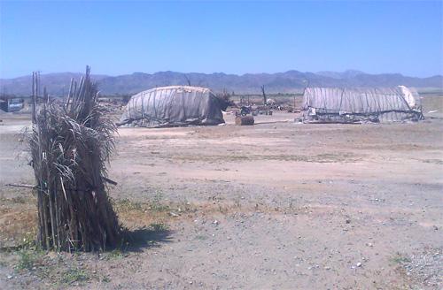 منطقه عشایری جنوب کرمان